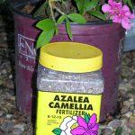 Nitrophos Azalea Camellia Fertilizer