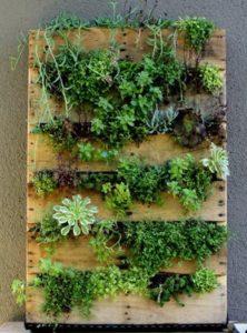amazing-pallet-garden
